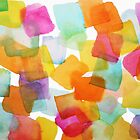 Color Squares by emilykenney