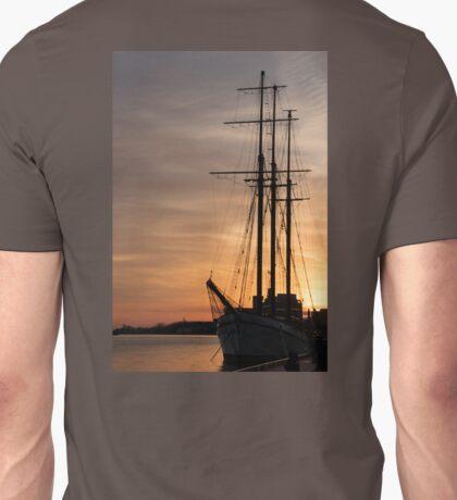 The Beautiful Empire Sandy at Sunset Unisex T-Shirt