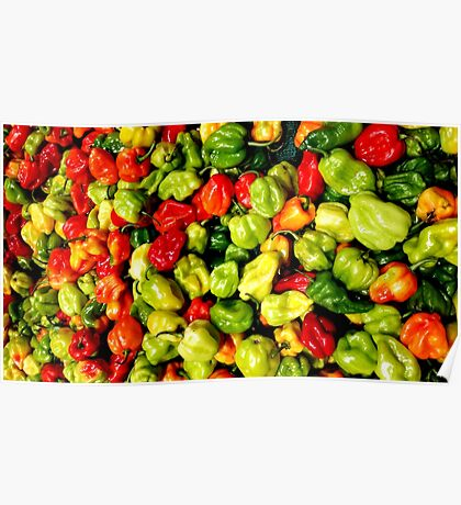 Jamaican Peppers Poster