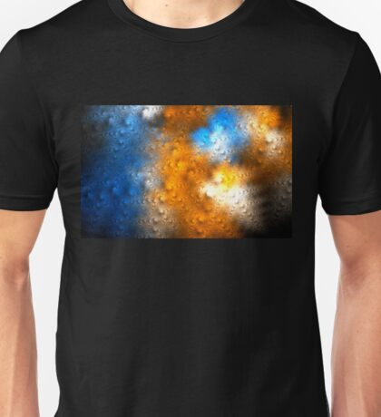 Threw The Windscreen Unisex T-Shirt