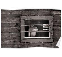Monochrome Torso in a Window Poster