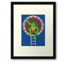 TURTLES IN TIME - LEONARDO  Framed Print