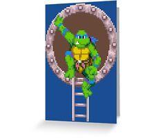 TURTLES IN TIME - LEONARDO  Greeting Card