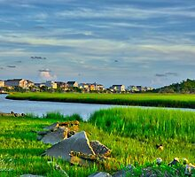 Pawleys Island near sunset by TJ Baccari Photography