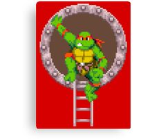 TURTLES IN TIME - RAPHAEL Canvas Print