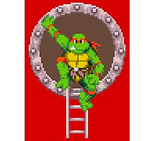 TURTLES IN TIME - RAPHAEL Photographic Print