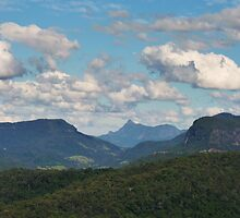 Beechmont ,from Rosins Lookout view to Mt WArning by Virginia McGowan