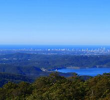 From Beechmont to the Gold Coast . by Virginia  McGowan