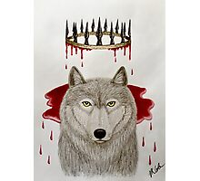 The King Who Lost the North Photographic Print