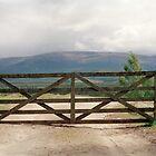 Scottish Highlands by Louise Bichan