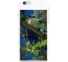 Blue Bellied Roller iPhone Case/Skin