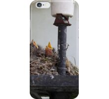 Bird nest in a street lamp. iPhone Case/Skin