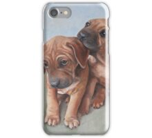 Brothers iPhone Case/Skin