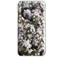 Common thyme (Thumus vulgaris)  iPhone Case/Skin