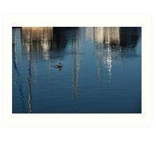 Young Red-Necked Grebe on Silver Art Print