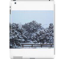 Snowy Forest Trail iPad Case/Skin