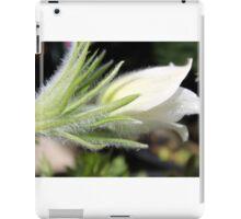 Spring Perennial Blossoming iPad Case/Skin