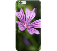 Common Mallow Flower iPhone Case/Skin