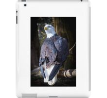 Bald Eagles iPad Case/Skin