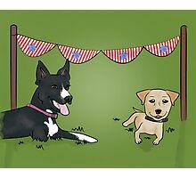 Patriotic Pups Photographic Print