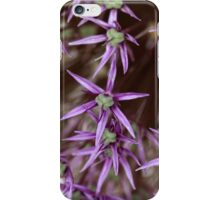 Flowers of a Persian onion (Allium cristophii) iPhone Case/Skin