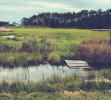 Let's Go on an Adventure: Chesapeake Bay by Kadwell