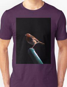 Robin on spade handle Unisex T-Shirt