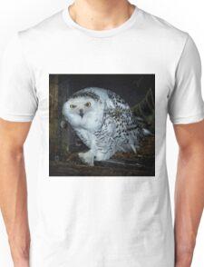 Snowy Owl Unisex T-Shirt