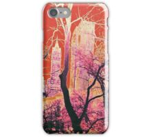 New York Central Park USA Abstract Design Sunset iPhone Case/Skin