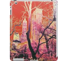 New York Central Park USA Abstract Design Sunset iPad Case/Skin