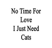 No Time For Love I Just Need Cats Photographic Print