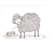 Tangled Sheep Photographic Print
