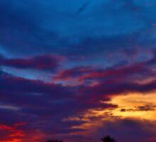 Multi Color Sunset Sticker