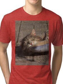 Grey cat playing with toy fish Tri-blend T-Shirt