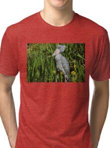 Shoebill Stork Tri-blend T-Shirt
