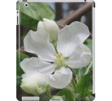 Apple Blossom Beauty iPad Case/Skin