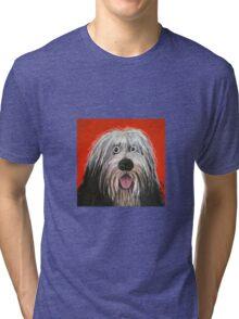 Sam the dog Tri-blend T-Shirt