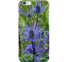 Sea Holly............... iPhone Case/Skin