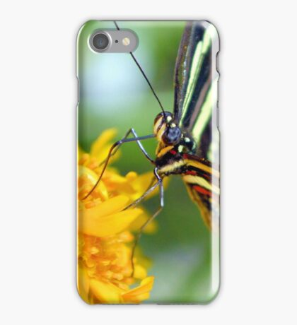 The Zebra Longwing iPhone Case/Skin