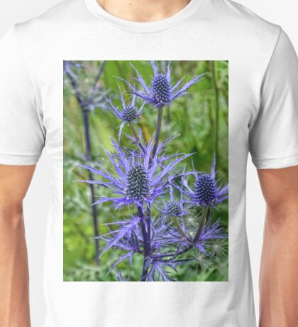 Sea Holly............... Unisex T-Shirt