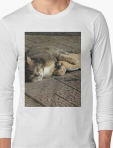 Grey cat sleeping with toy fish Long Sleeve T-Shirt