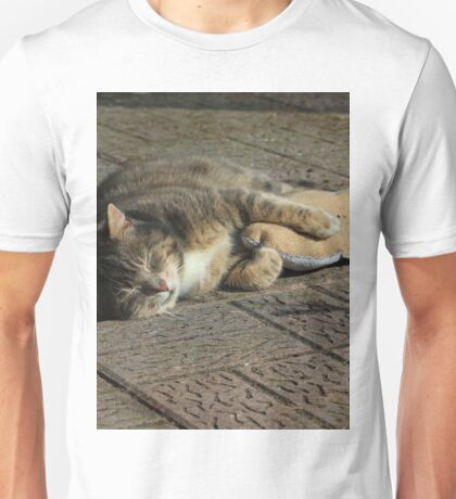 Grey cat sleeping with toy fish Unisex T-Shirt