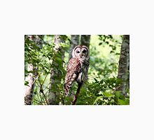 Barred Owl in the Forest Unisex T-Shirt