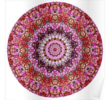 Red and Purple Floral Mandala Poster