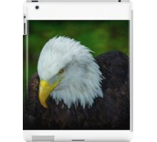 Bald Eagle, iPad Case/Skin