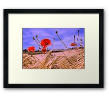 Barley with Poppies Framed Print