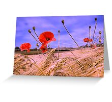 Barley with Poppies Greeting Card