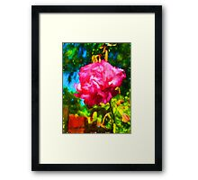 Pink Rose next to the Brick Wall Framed Print
