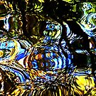 Reflecting on a shaded duck pond. by ronsphotos