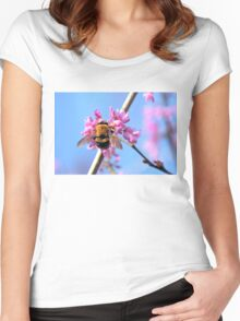 Eastern Redbud And The Bee Women's Fitted Scoop T-Shirt